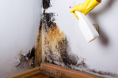 Black-mold-in-the-corner-of-room